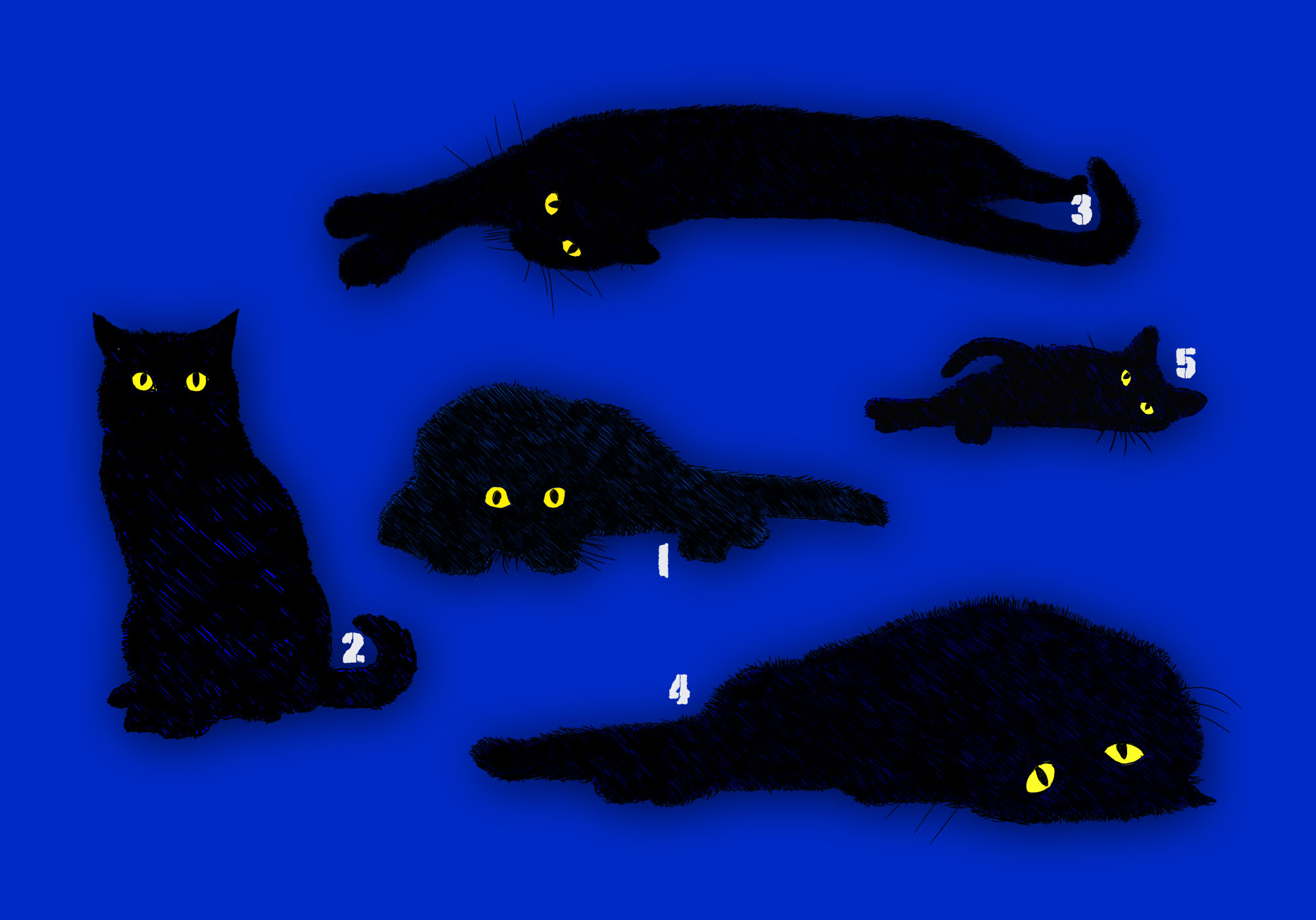 my cats, Illustration von HAAG Kommunikationsdesign Webdesign Grafikdesign